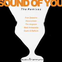 Gushi & Raffunk - Sound of You (The Remixes)