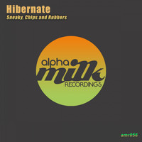 Hibernate - Sneaky, Chips and Rubbers