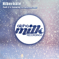 Hibernate - Cool It's Snowing
