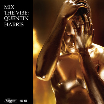 Quentin Harris - Mix the Vibe: Quentin Harris Timeless Re-Collection