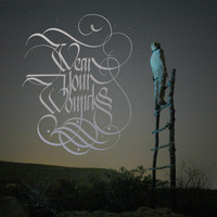 Wear Your Wounds - Wear Your Wounds