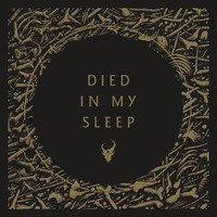 Demon Hunter - Died in My Sleep