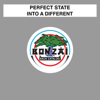 Perfect State - Into A Different