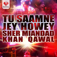 Sher Miandad Khan - Tu Samney Jey Howay - Single