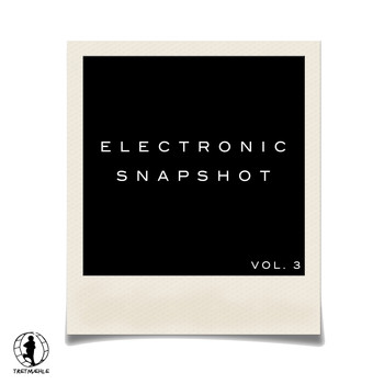 Various Artists - Electronic Snapshot, Vol. 3