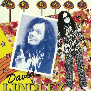 David Lindley - Mr. Dave
