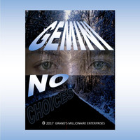 Gemini - No Choices
