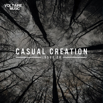 Various Artists - Casual Creation Issue 20