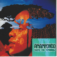 Amampondo - Drums For Tommorow