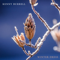 Kenny Burrell - Winter Dress