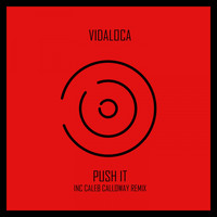 Vidaloca - Push It