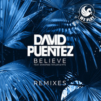 David Puentez - Believe (feat. Shawnee Taylor & MTS) (Remixes)