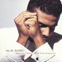 Al B. Sure! - Private Times... And The Whole 9!
