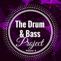 Various Artists - The Drum & Bass Project: Volume 4