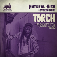 Torch - Natural High (Overdosing) [What to Do Riddim]
