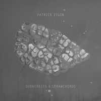 Patrick Zigon - Dubberries & Strawchords