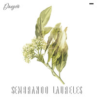 Danger - Sembrando Laureles