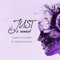 Various Artists - Just a Moment, Vol. 2 (Compiled & Mixed by Serge Kraplya)