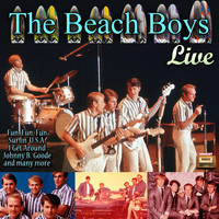 The Beach Boys - The Beach Boys, Live