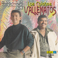 Los Chiches Vallenatos - Grandes Exitos De