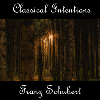 Franz Schubert - Instrumental Intentions: Franz Schubert