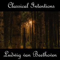 Ludwig van Beethoven - Instrumental Intentions: Ludwig van Beethoven