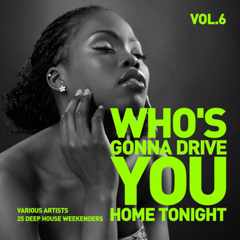 Various Artists - Who's Gonna Drive You Home Tonight (25 Deep-House Weekenders) Vol. 6