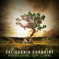 California Sunshine - Festival Of Life