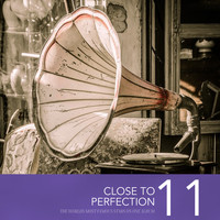 Various Artists - Close To Perfection, Vol. 11