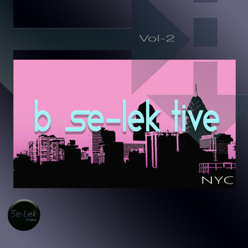 Various Artists - B Se-Lek Tive NYC, Vol. 2