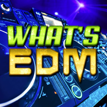 Various Artists - What's EDM