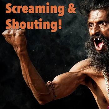 Various Artists - Screaming & Shouting