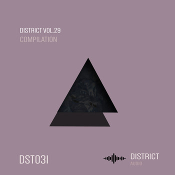 Various Artists - District 29