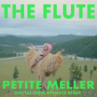 Petite Meller - The Flute (Digital Farm Animals Remix)