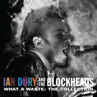 Ian Dury & The Blockheads - What a Waste: The Collection (Explicit)