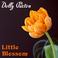 Dolly Parton - Little Blossom