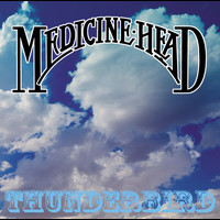 Medicine Head - Thunderbird