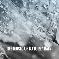 Ocean Waves For Sleep, White! Noise and Nature Sounds for Sleep and Relaxation - The Music of Nature: Rain