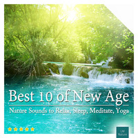 Naturlicious, Bird Songs Nature Music Specialists and Sounds of Nature White Noise Relaxation Medita - Best 10 of New Age | Nature Sounds to Relax, Sleep