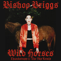Bishop Briggs - Wild Horses (Thundatraxx & The SKX Remix)