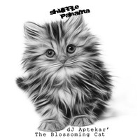 Dj Aptekar' - The Blossoming Cat