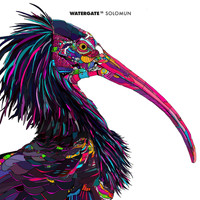Solomun - Watergate 11 - mixed by Solomun