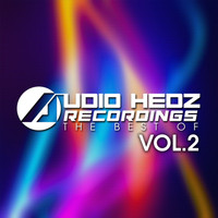 Various Artists - Audio Hedz Recordings The Best Of, Vol. 2