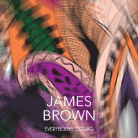 James Brown - Everybodys Darling