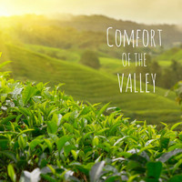 Meditation Music Zone - Comfort of the Valley