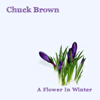 Chuck Brown - A Flower in Winter