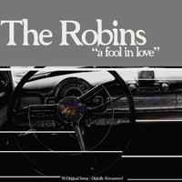 The Robins - A Fool in Love
