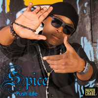 Spice - Push'iLife (Explicit)