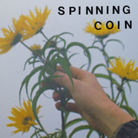 Spinning Coin - Tin