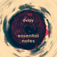 Dvlay - Essential Notes